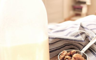 Fall-Spiced Nut Milk